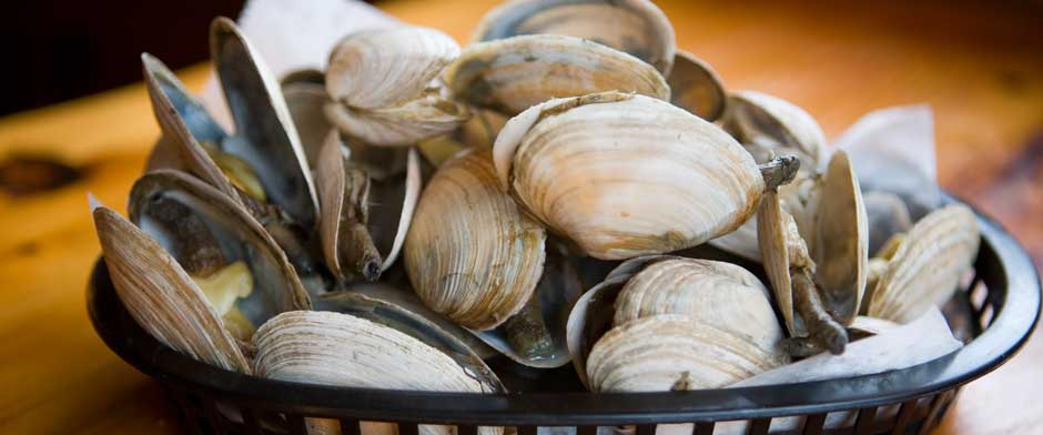 Maine Steamed Clams